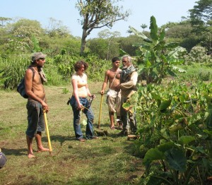 Summer Permaculture Community Internship